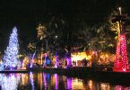 ポリネシアの村で南国のクリスマスを体験
