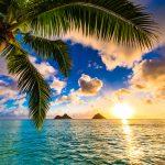 ハワイのオアフ島で絶対に外せないビーチ5選|全米No.1ビーチも掲載