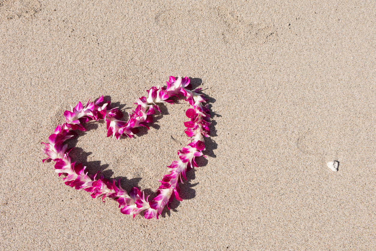 heart shaped orchid flower garland sand white sand baech