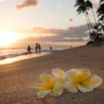 ハワイ・ホノルル観光の穴場スポット15選|現地在住者おすすめの名所