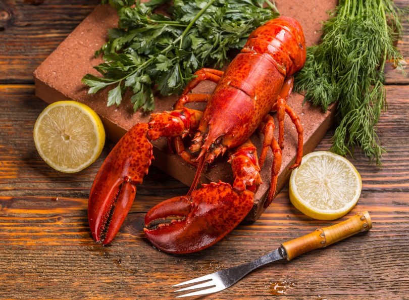 Freshly cooked lobsters with lemon and herbs
