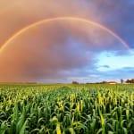 ハワイ旅行のベストシーズンは年2パターン|雨季・乾季の時期や意外な注意点とは?