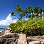 ハワイ・マウイ島のおすすめホテル17選!|カアナパリ・ワイレア周辺の人気ホテル