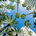 ハワイ・オアフ島の人気ホテル24選!目的別に泊まりたいホテルを厳選