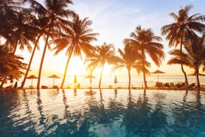 beach holidays, luxury swimming pool with palm trees