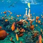 ハワイ・オアフ島の観光スポットおすすめ5選│レンタカー会社やツアーも